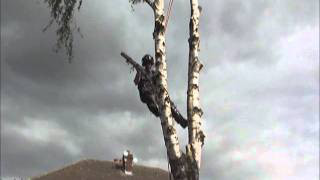 Tree Pruning Canonbury
